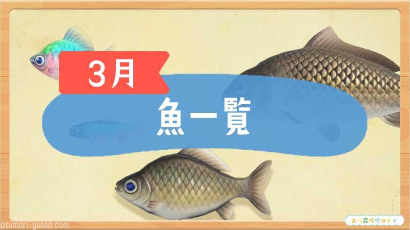 あ つもり 魚 値段
