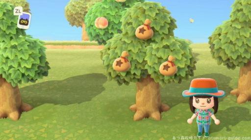 森 の あつ なる 木 金 【あつ森】家具の出る木を見分ける方法!時間操作なし やーさんの雑記ブログ